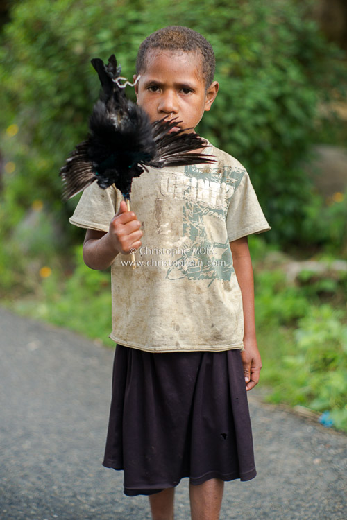 Papua New Guinea: the little girl with the dead bird in Highlands Region